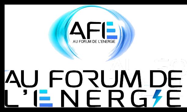 Au Forum De L'Energie